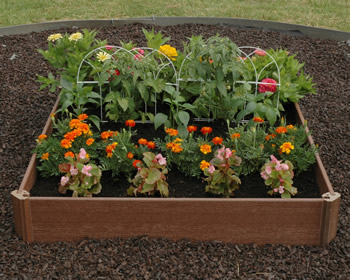 ... Garden and Planting Kits--Win an Almost Instant Vegetable Garden Free
