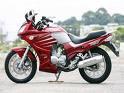 motos, transito em perigo