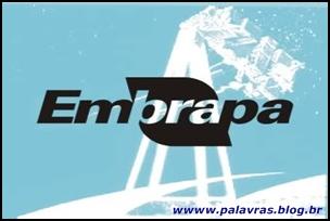 Concurso Embrapa com 676 vagas.