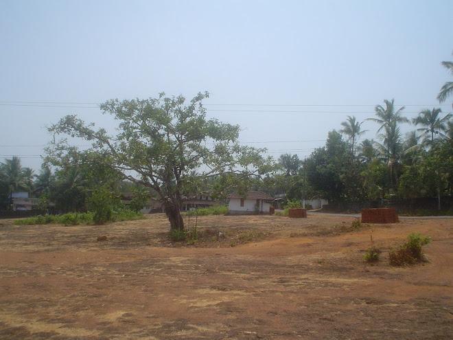 പാറപ്പുറം