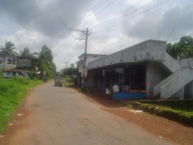 പൂച്ചോലമാട്