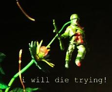 dijo miceli: