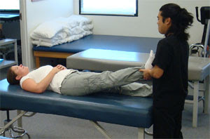 Integrative Manual Therapy Practitioners