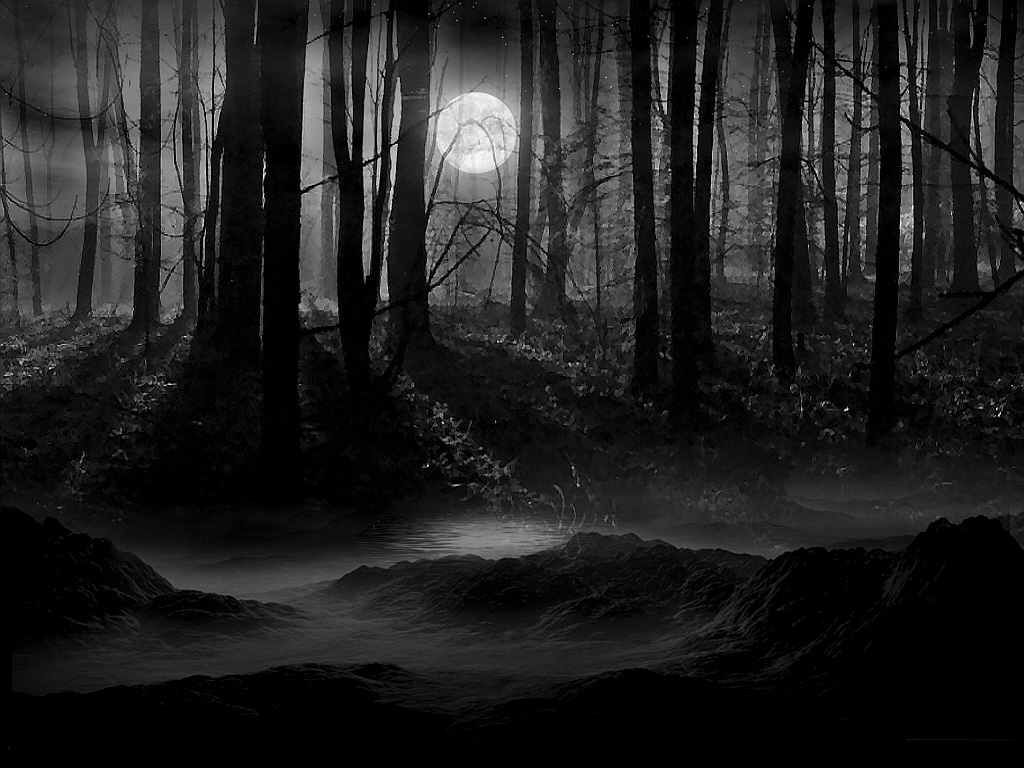 Dark Forest Full Moon