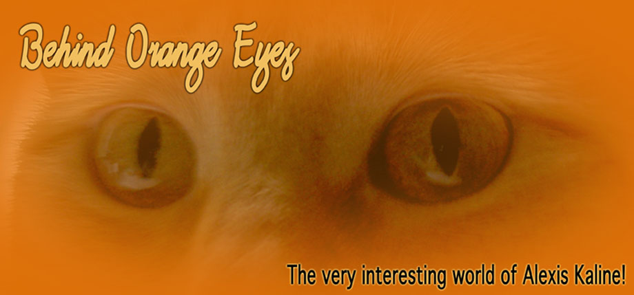 Behind Orange Eyes