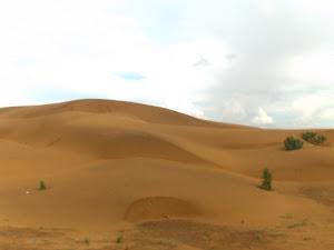 Parque Nacional Medanos de Coro