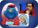 """Síguenos por el """"Candanga Twitter"""" """"@colectivocecufm""""  y también por Chavez Candanga"""