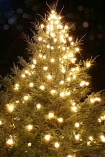the christmas tree eternal life because it stays green all year all needles point to heaven this symbolizes mans thoughts returning toward heaven