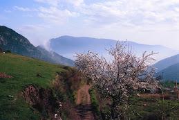 Camino Bubion