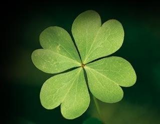 Una luz una esperanza tr bol de 4 hojas - Objetos de buena suerte ...