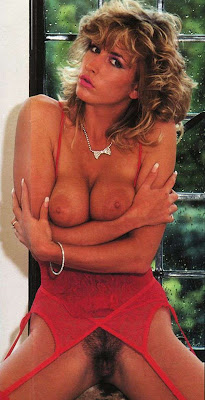 Heather Mills- McCartney nude - 57 Pics - xHamstercom