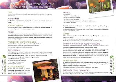 Concurso <br />A.M.Verpa 2010