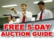 Gov-Auctions