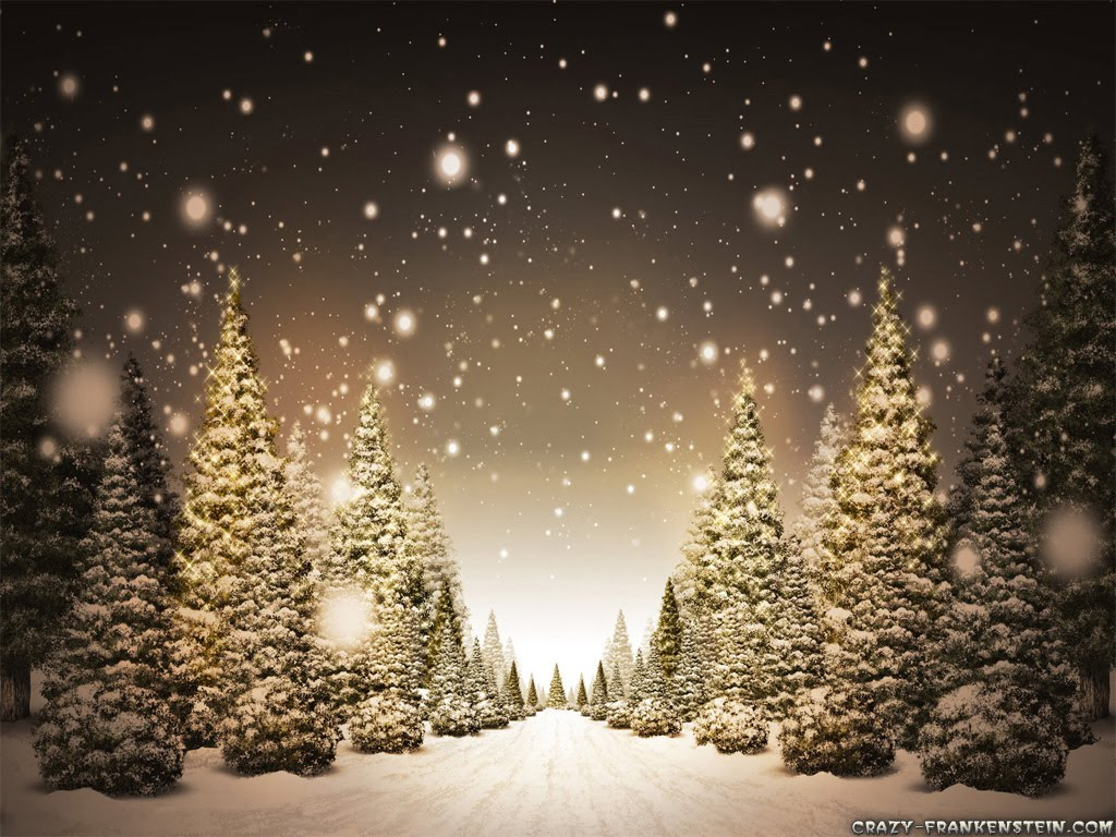 http://3.bp.blogspot.com/_J18zCOm3i1c/TRT5PWbHR4I/AAAAAAAAC1Q/Z-J4uEGlKPM/s1600/snow-path-christmas-tree-wallpapers.jpg