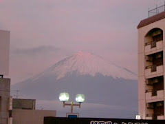 One last picture of Mt. Fuji