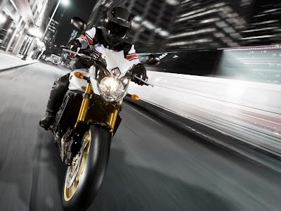 2010 Yamaha FZ8 Action View