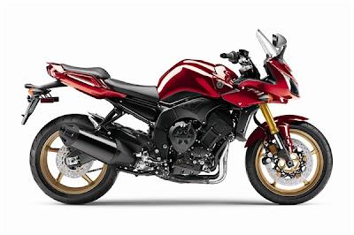2010 Yamaha FZ1 Image
