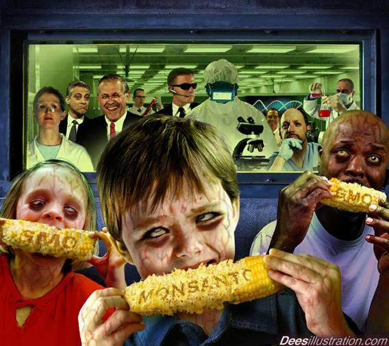 Monsanto T2: bénéfice en hausse de 15%