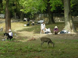 鹿も途中参加した、エンジョイスケッチ会in奈良の様子