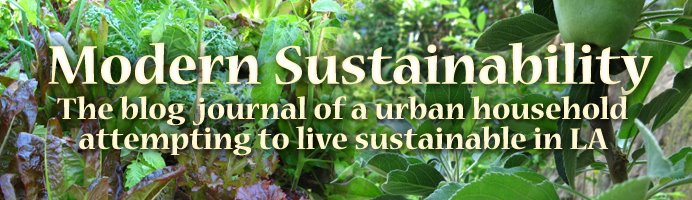 Modern Sustainability