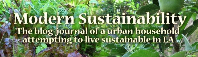 Modern Sustainability