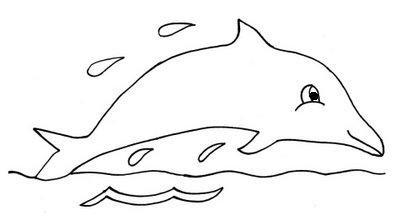 Desenhar golfinho