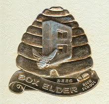 Box Elder High School Bees