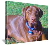 FREE Personalized 8x10 Canvas Photo