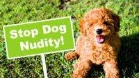 Puppia stop dog nudity!!!