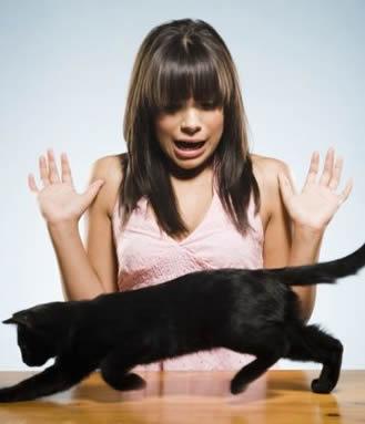Las 10 fobias mas comunes