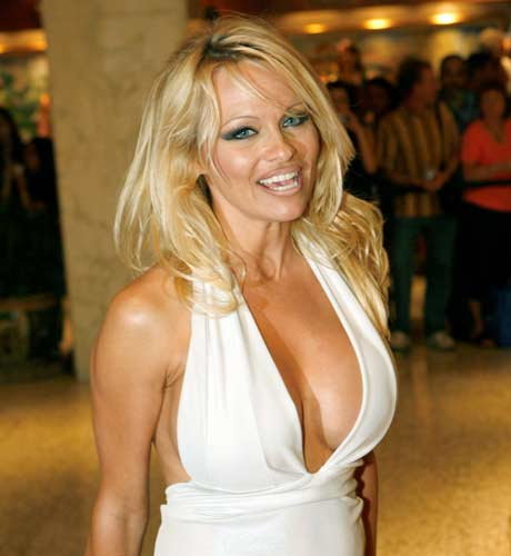 pamela anderson wallpapers. images pamela anderson lee