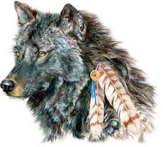 Lobo pardo