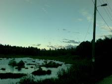 Pieni neva Espoon keskuspuistossa