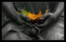 Melegből lett hideg tavaszból ősz