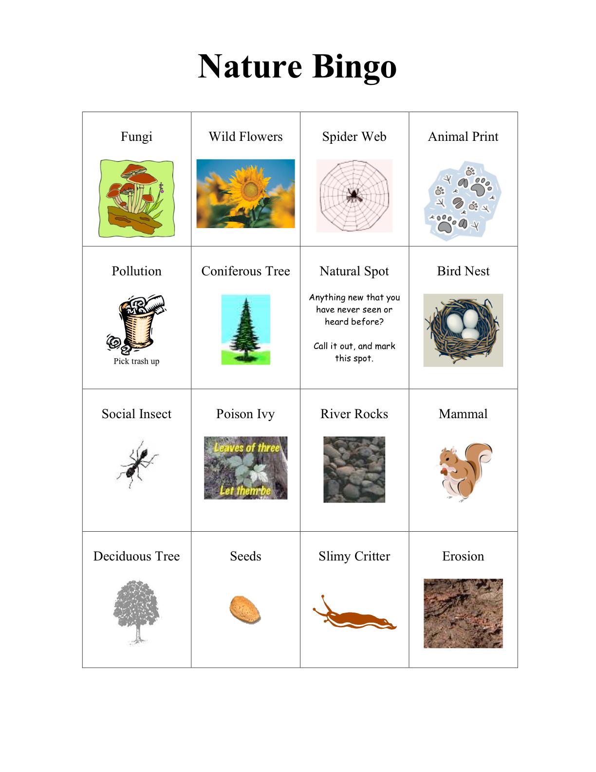 astronomy bingo - photo #24