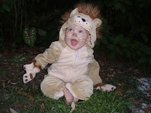 Ferocious little Lion .. grrrr!