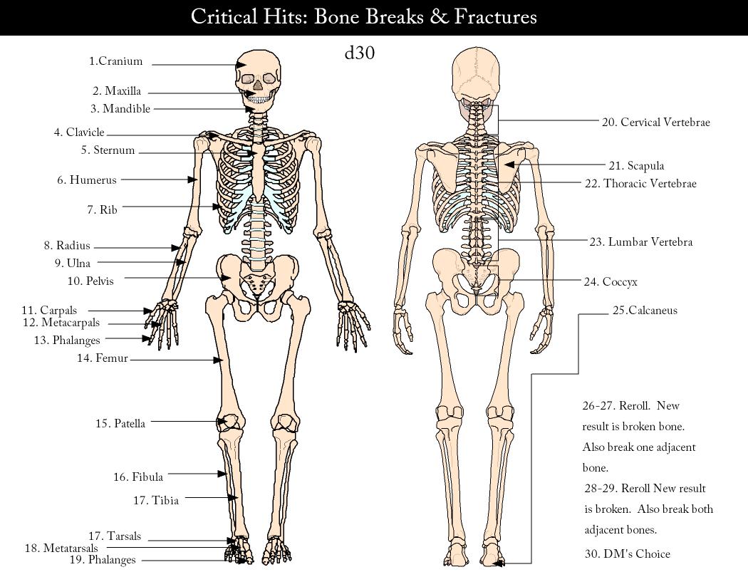 representations of the post human pdf
