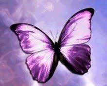 http://3.bp.blogspot.com/_JN5Wf3jiAdU/SqFTCkytZ3I/AAAAAAAAAGY/mW7fBvdUChk/s320/Mariposa+morada.jpg