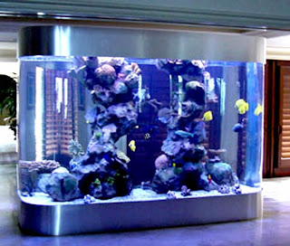 aquariums with live aquatic plants