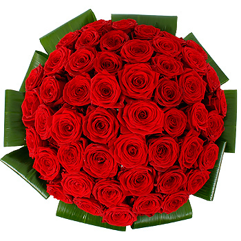 Red and white roses bouquet meaning images amp pictures becuo