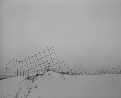 heavy blizzard with only ragged fence visible