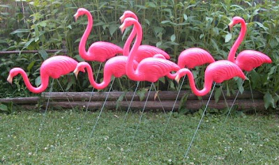 heard of plastic pink flamingos on lawn