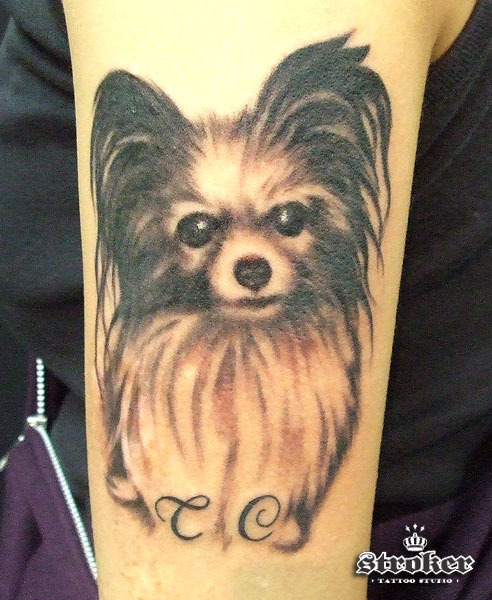 There are a lot of great cat tattoos out there, but this one is a puppy dog!