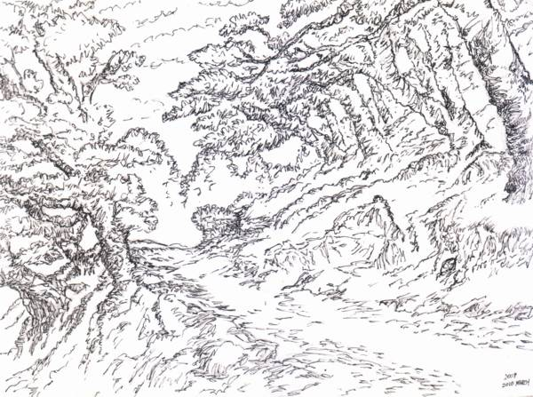 Line Art Forest : The garden of forking paths