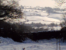 Winter at Ashdale