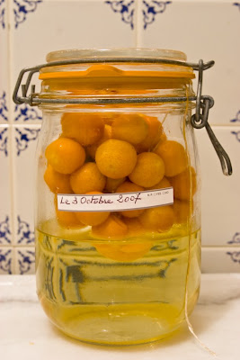 Easy Does It Home Made Cointreau