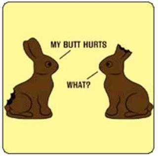 http://3.bp.blogspot.com/_JPMXb4lwShk/R-alHnUkOJI/AAAAAAAAAqs/w8-3kHo6qLI/s320/Rabbit-Chocolate-T-Shirt-Snorgtees-795707.bmp