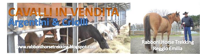 cavalli argentini