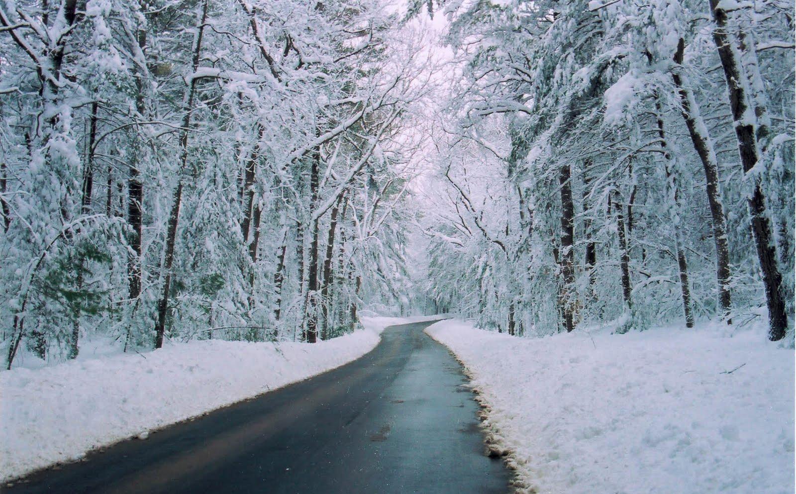 [lonesome+road.jpg]