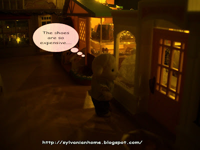 Sylvanian families night view